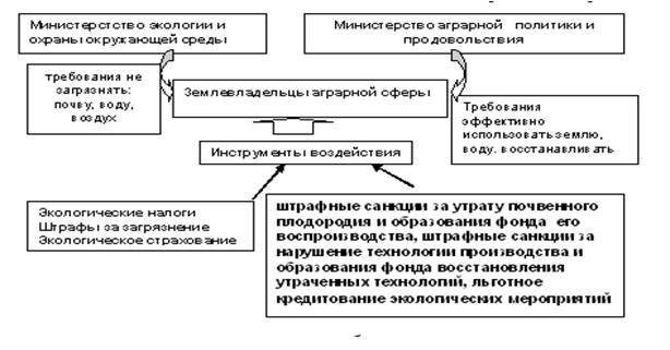 Распределение функциональных